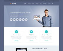 Professional and Flexible WordPress Theme