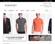 Barberry-wordpress_online_store_template