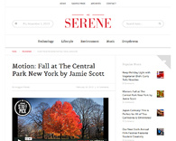 Serene-minimal_magazine_wordpress_theme
