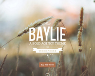 Baylie-full-screen-parallax-wordpress-theme