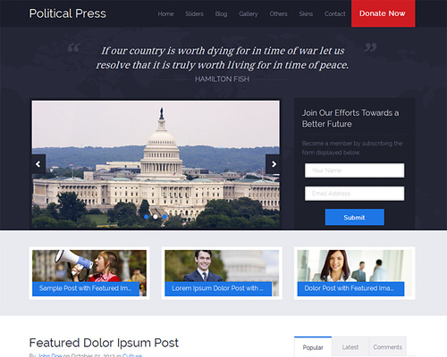 WordPress Theme for Politics