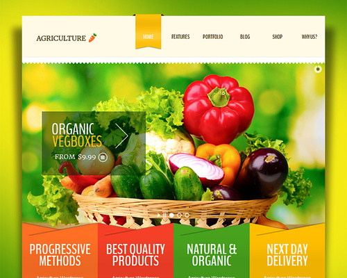 Whole Foods Organic Market WordPress Theme