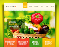 Agriculture-whole-foods-organic-market-wordpress-theme