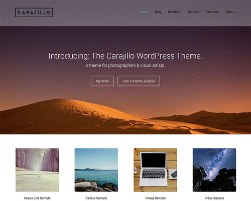 WordPress Theme for Visual Artists