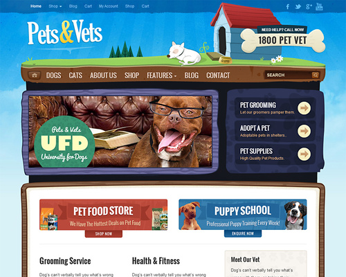 Pet Training, Grooming and Store WordPress Theme