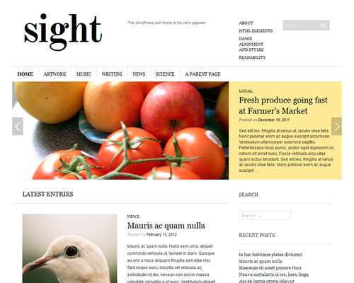Simple Online Magazine WordPress Theme