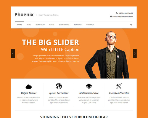 Advanced WordPress Theme