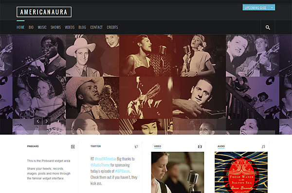 WordPress Theme for Musicians – Americanaura